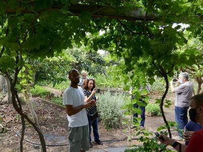 סיור בגינת ירק, הסברים על הגידול