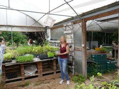 חממה לירקות אורגניים והידרופוניים