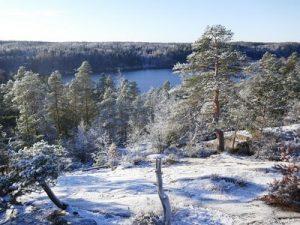 נוף חורף בשלג על אגם פינלנד