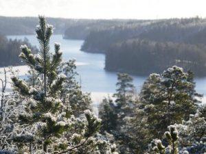טיול בשלג, עצים ונוף