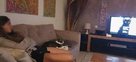 חתול וילדה צופים בטלויזיה