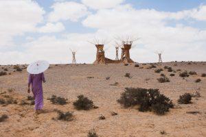 midbern-מידברן הליכה במדבר