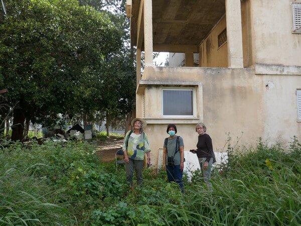 מתנדבים צפרים ערכו סקר קינון באזור של כריתת עצים לפני פינוי בינוי