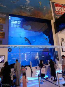 dubai_aquarium אקווריום הוא חלק מקניון דובאי