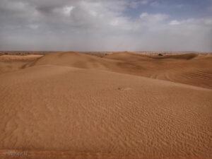 dubai_desert safari, חוויה של ספארי במדבר עם ג'יפים, מטיילים בתוך שמורת טבע ואפשר לצפות בבעלי חיים מדבריים