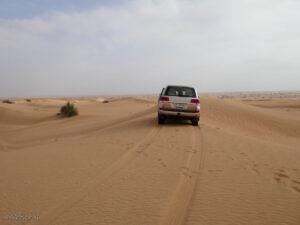dubai_ספארי ג'יפים במדבר, שמירה על הטבע באיחוד האמירויות