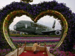 פארק הפרחים בדובאי. בדובאי מבחר פארקי שעשועים, פרחים